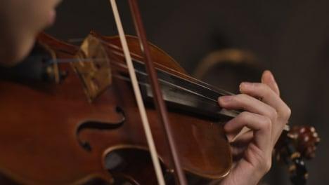 Colleen Bertsch, Violin, Viola, Small Ensemble teacher
